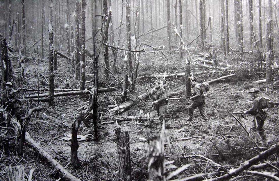 Bitter Fighting in Moyland Woods