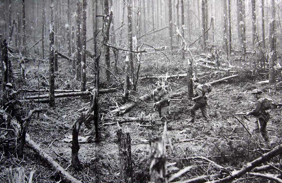 Bitter Fighting in Moyland Woods